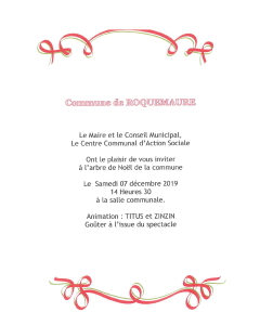 Invitation spectacle de Noel