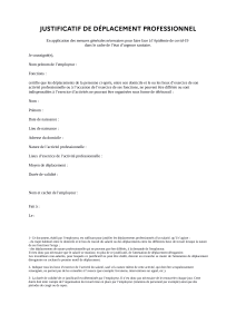 30-10-2020-justificatif-de-deplacement-professionnel-1
