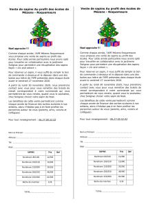 sapins flyers 2020 roquemaure 1-1-1